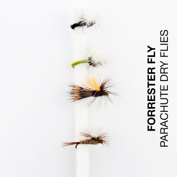 Forrester Fly-Sortiment Parachute Dry Flies